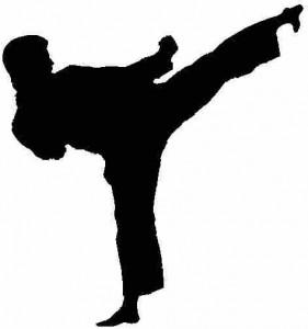Karate-Do2