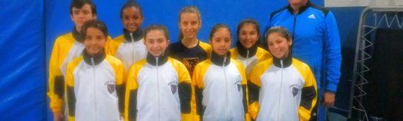 Campeonato Estadual de Ginástica de Trampolim